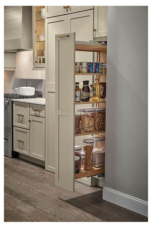 Pull Out Kitchen Pantry Cabinets kitchen design & decor ideas gallery