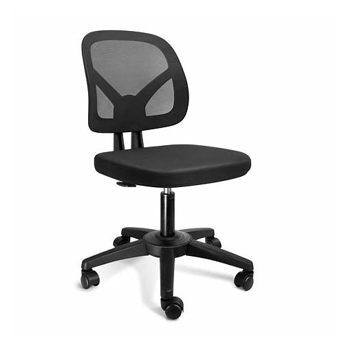 Small Office Chair office design & decor ideas gallery